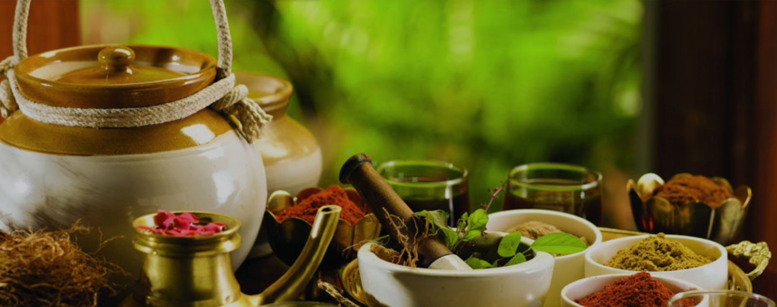 Classical Ayurveda Medicines